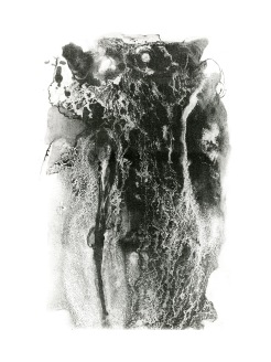 """Tyler School of Art, Lithography. Liquid Project: Use liquid-based drawing materials on ball grain plate to create a black and white image. Maureen Bilotta, BA, art education major, 15"""" x 20"""", lithograph on paper, Summer 2011. In this second assignment, students use liquid materials to draw on ball grain plates. Maureen poured on some solvent-based tusche and waited to see the beautiful reticulation. She then did an great job etching the plate and printing it to show the great detail and variation. The class was cross-registered as both a BFA and BA course in order to run over the summer."""