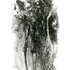 "Tyler School of Art, Lithography. Liquid Project: Use liquid-based drawing materials on ball grain plate to create a black and white image. Maureen Bilotta, BA, art education major, 15"" x 20"", lithograph on paper, Summer 2011. In this second assignment, students use liquid materials to draw on ball grain plates. Maureen poured on some solvent-based tusche and waited to see the beautiful reticulation. She then did an great job etching the plate and printing it to show the great detail and variation. The class was cross-registered as both a BFA and BA course in order to run over the summer."